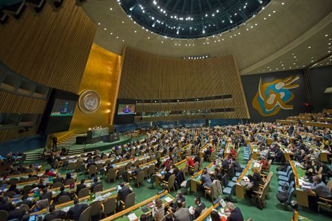 United Nations uses Bag End Subwoofers for perfect sound